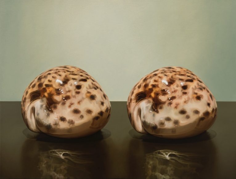 'Zwei Muscheln' 2014, oil on canvas, 39 x 51 cm
