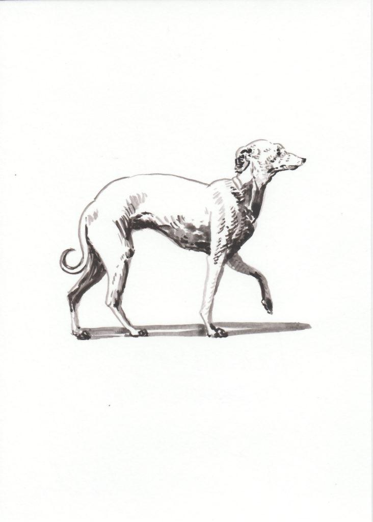 ELISABETH LLACH 'Levrette profil', 2018 Acrylic on paper 21x15cm