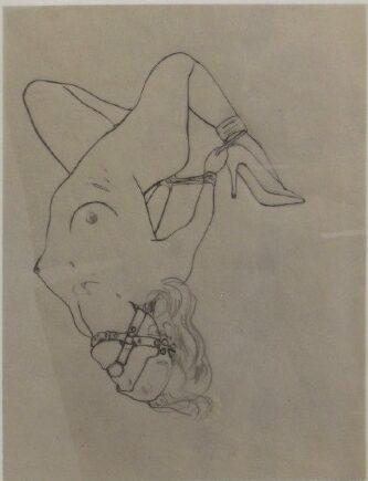 'Hogtie' 2013, Graphite on vellum, 43 x 33 cm