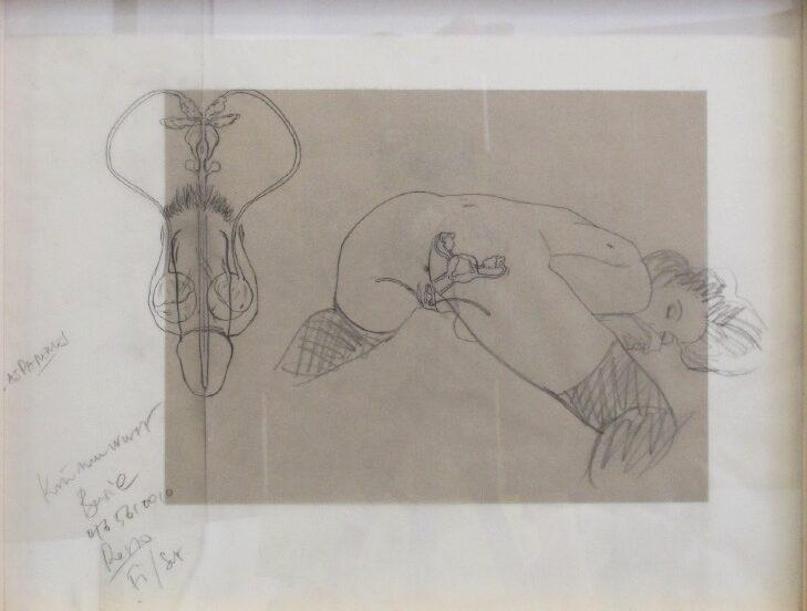 'Anatomy study' 2013, Graphite on vellum, 43 x 33 cm